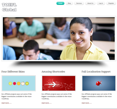Testimonial for WordPress Fix by toeflintl.com